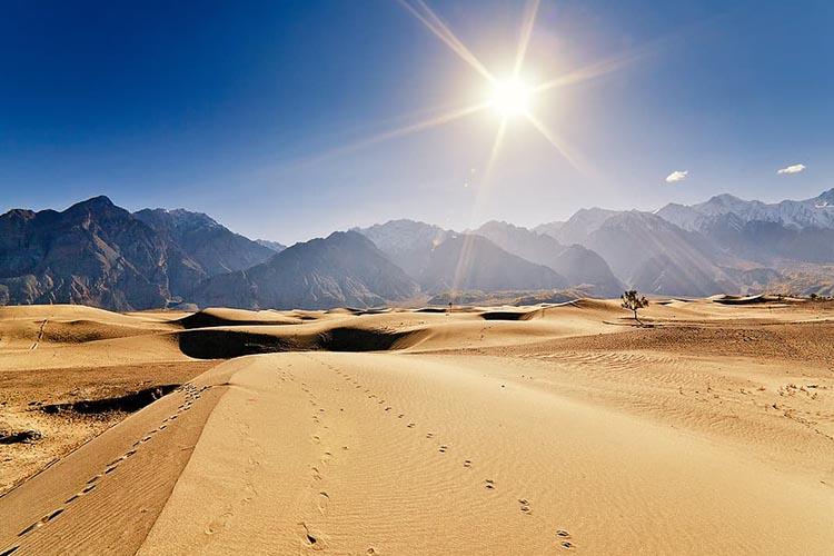 cold desert 1.jpg