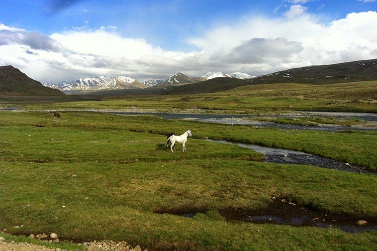 Deosai_national_park_Skardu_Gilgit.jpg