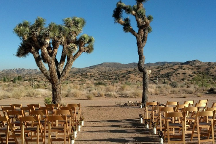 desert wedding 2.jpg