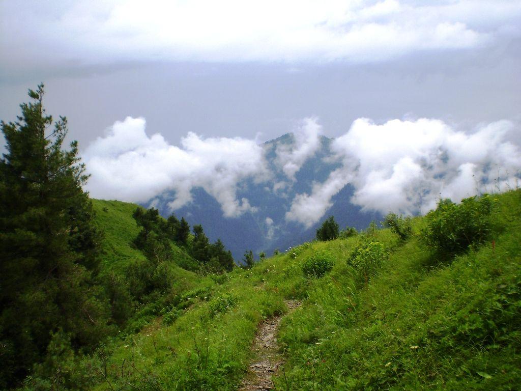 Shimla-pahari.jpg