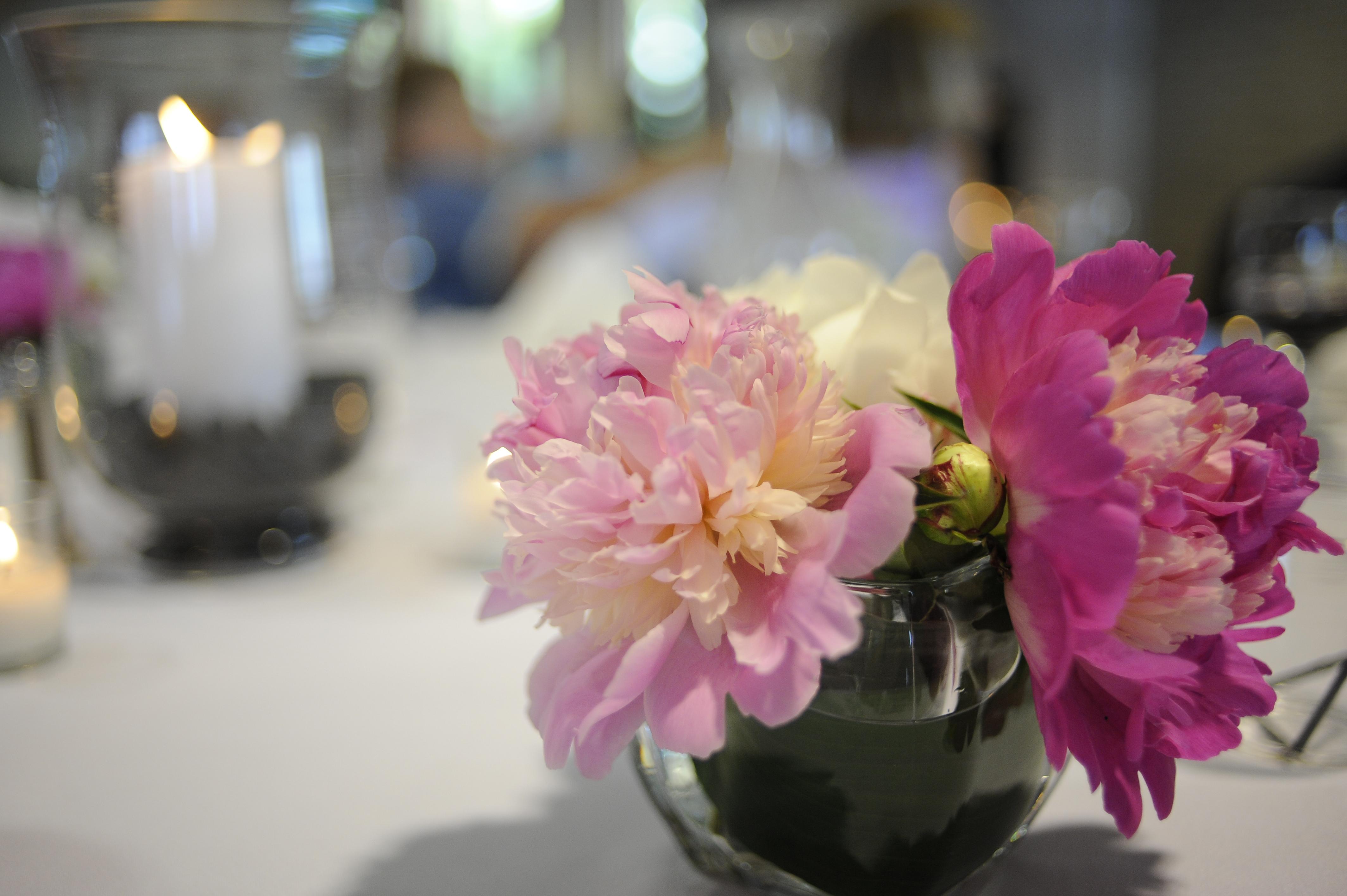flowers DW 5 peonies.jpg