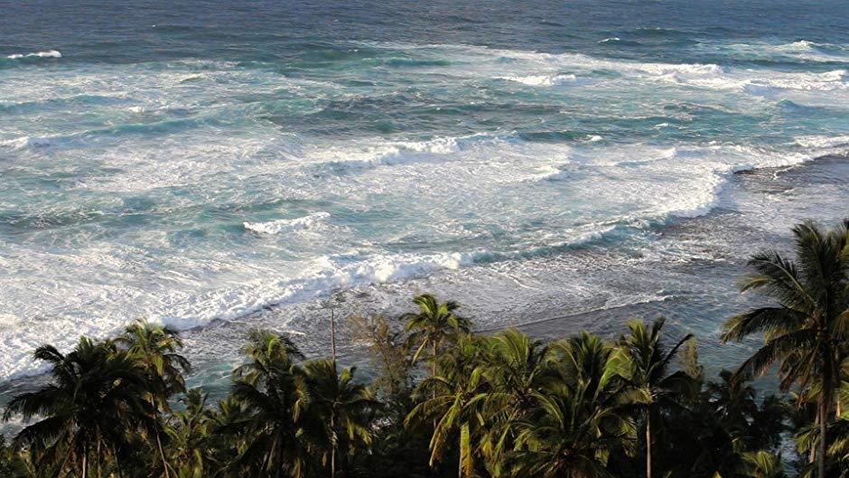 Beaches Of The Amazon-South America
