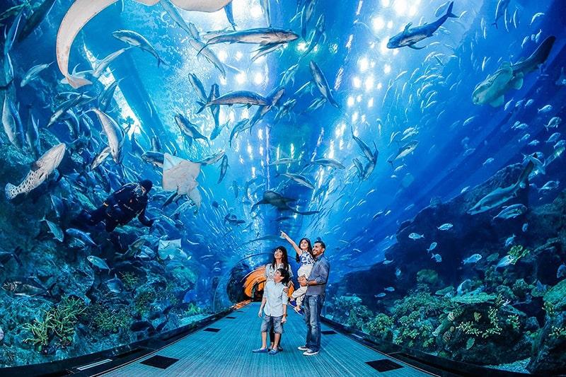 7.Dubai Mall Aquarium, Dubai-U.A.E