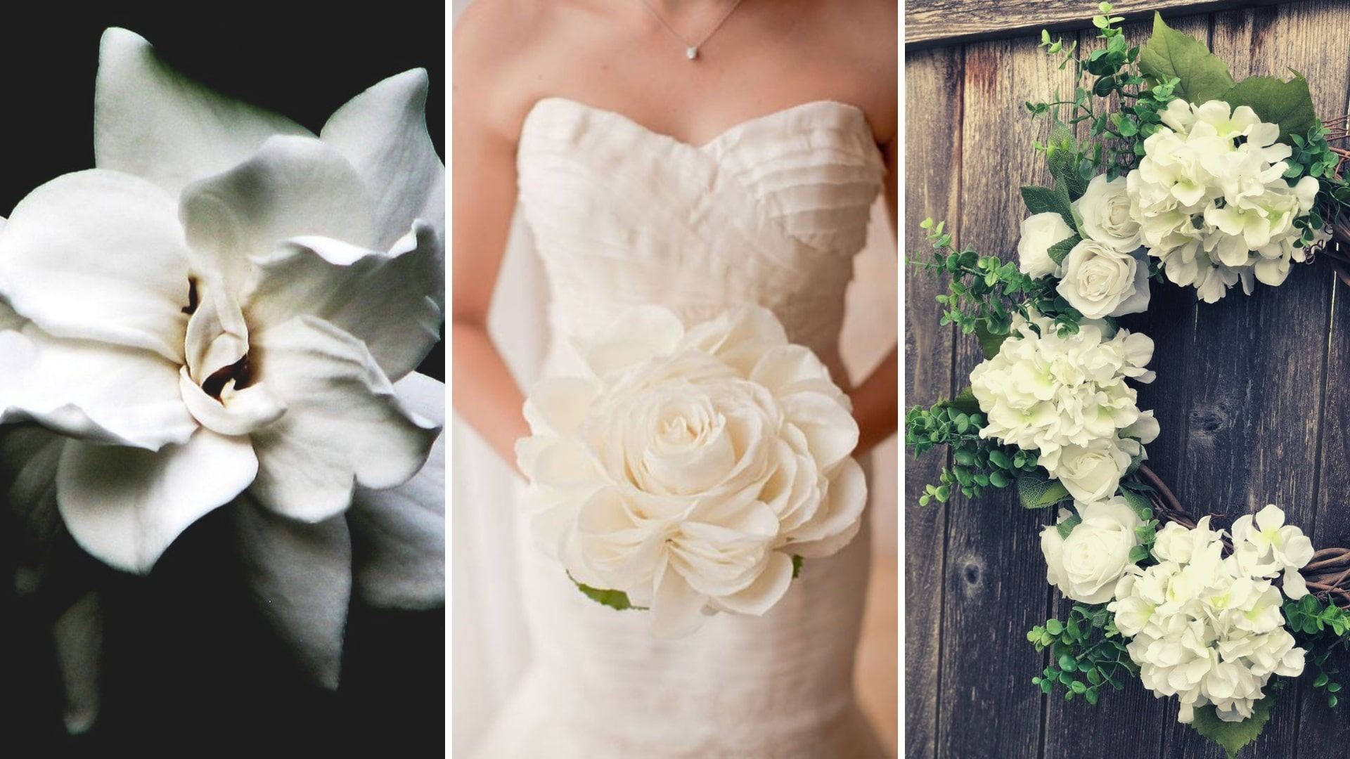 Your Ultimate Guide to Wedding Flowers' Names & Types