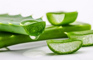 How to Introduce Aloe Vera into Your Bridal Beauty Regimen?