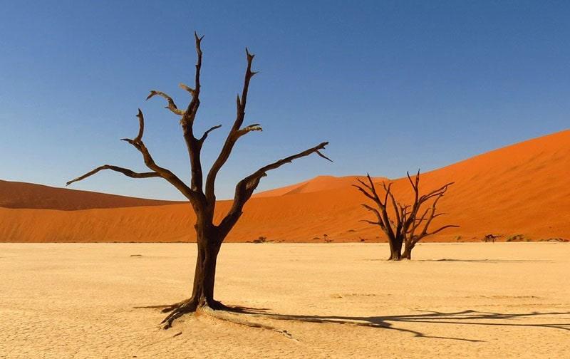 9.Kalahari Desert-Africa