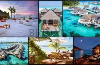 Top 7 Resorts in the Maldives: A Summer Haven of Gorgeous Sandy Beaches & Adventure
