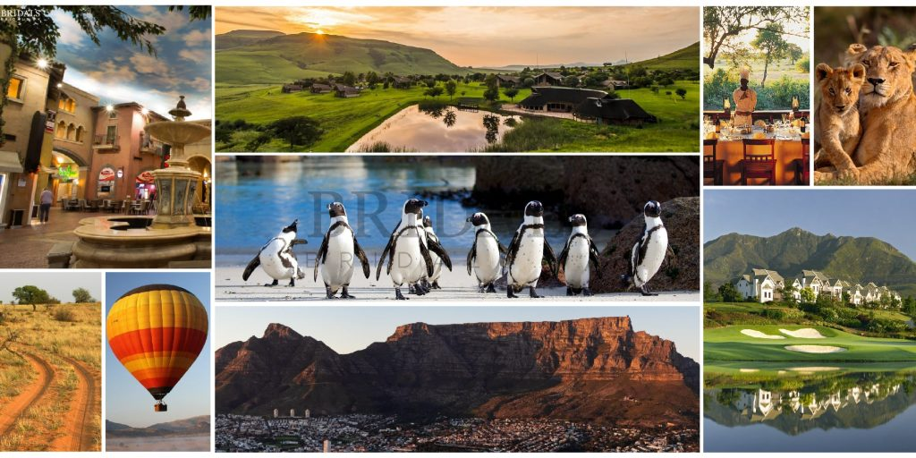 Tourist Attractions in South Africa That Should Be On Your Bucket List